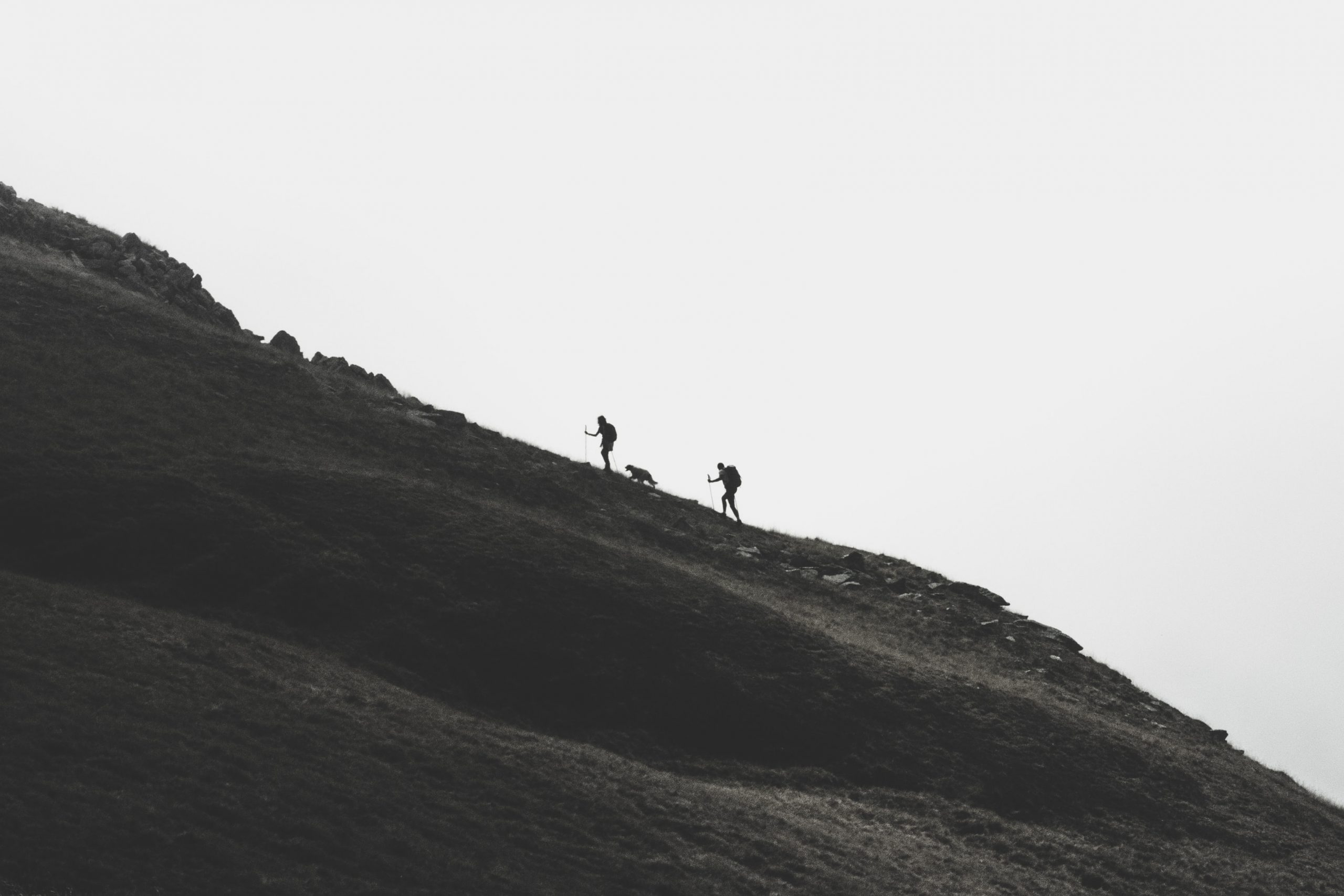Hikers on a slope